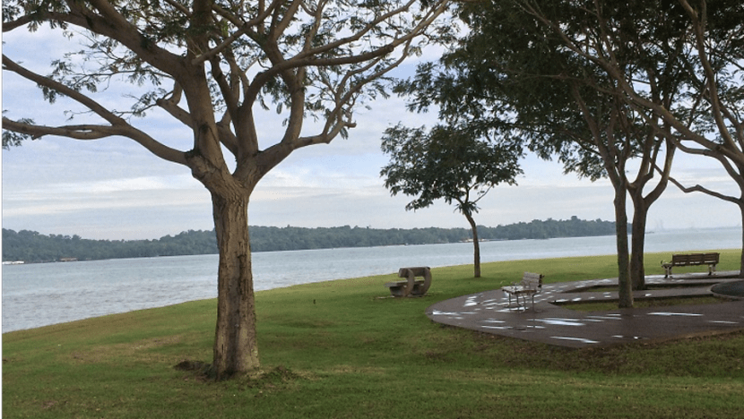 Site at Changi Beach to be designated for post-death rites, will not be used for scattering of ashes