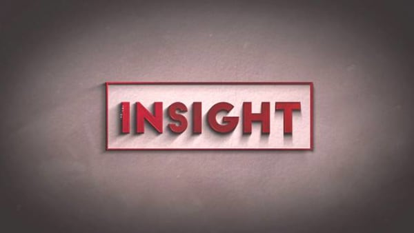 Insight 2021/2022