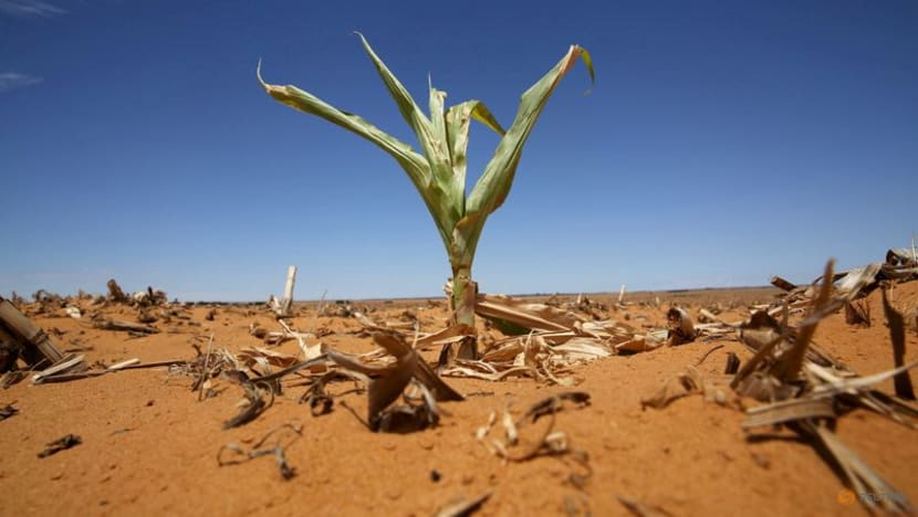 Lukewarm: rich states set to fall short of US$100 billion climate funding goal