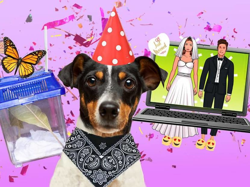 Circuit breaker celebrations: How Singaporeans are doing birthdays and weddings differently