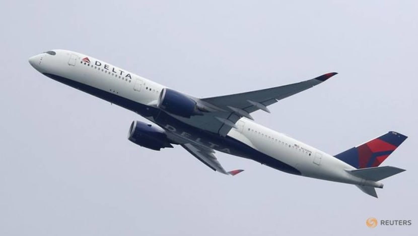 Delta CEO expects positive cash flow by spring - memo