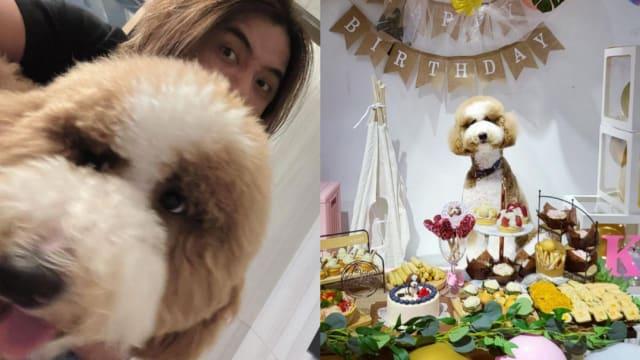 自揭2年没工作 罗志祥感谢爱犬陪伴