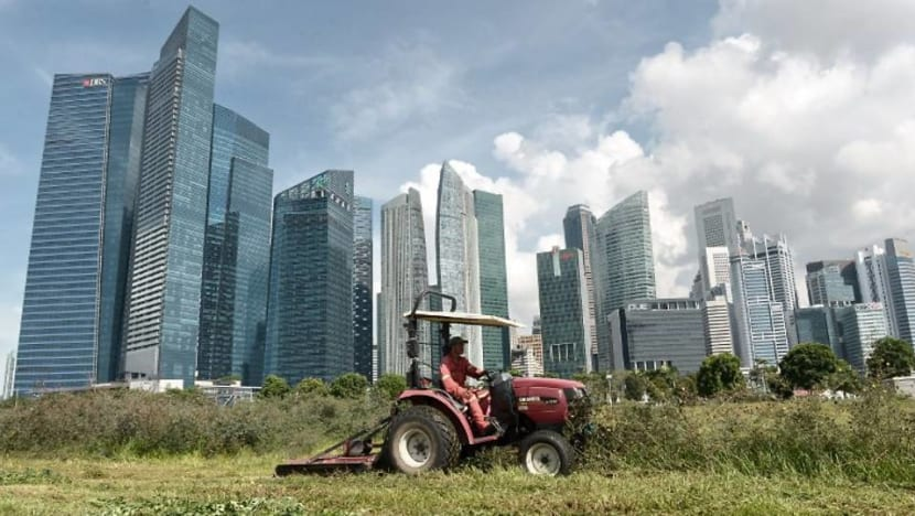 Commentary: Climate change in Singapore and what the future brings