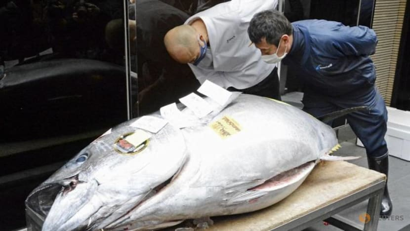 Tuna goes for US$200,000 at Tokyo market's New Year auction