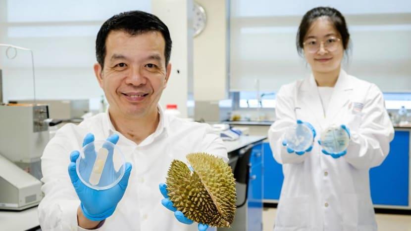 NTU scientists transform discarded durian husks into antibacterial gel bandages