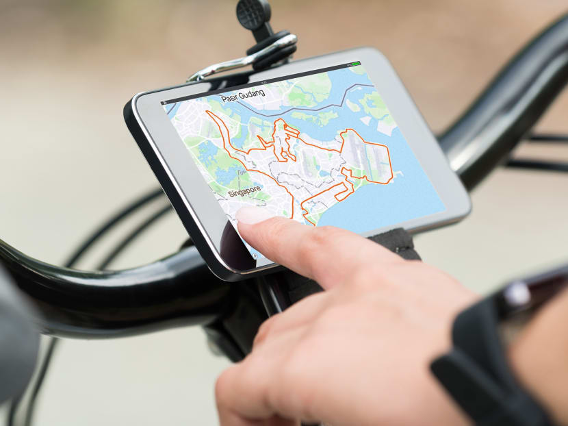Dinos and pandas: When Singapore cyclists get artistic with their GPS routes