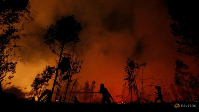 Indonesia on high alert for forest fires until November as dry season is delayed: Environment minister