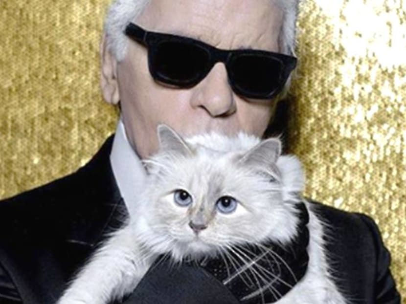 Remembering Karl Lagerfeld's love for his 'kept woman': His cat Choupette