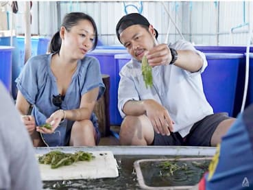 In Bangkok, a chef couple who only use Thai ingredients in their restaurant