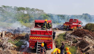 NParks developing forest fire detection and monitoring system for nature reserves