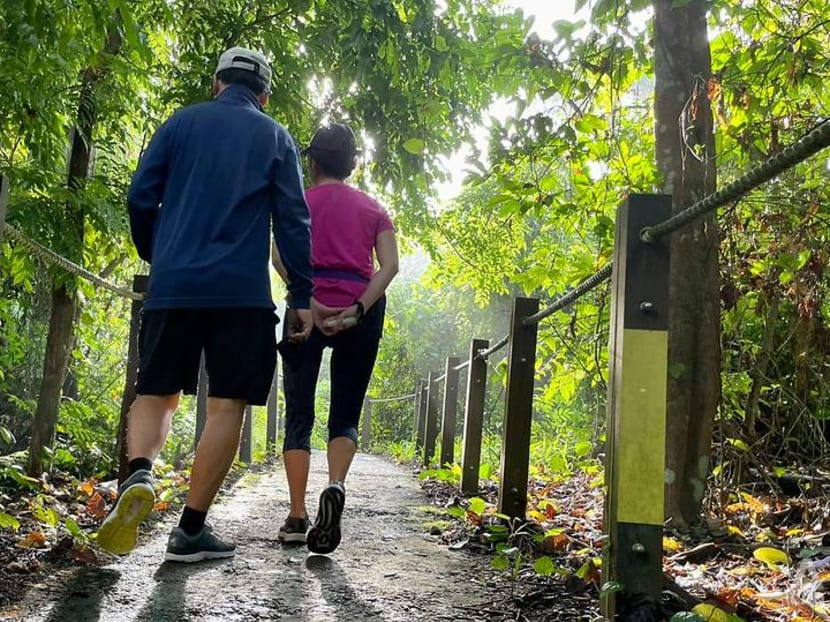 IN FOCUS: From 'devastated' land to many long trails: Singapore's path to becoming a hiker's paradise