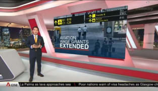 Wage grants for aviation workers extended by 6 months | Video