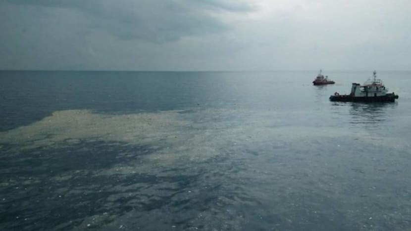 Lion Air flight crashes into sea after taking off from Jakarta