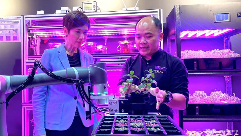 More support for manufacturing firms looking to train PMETs as sector transforms