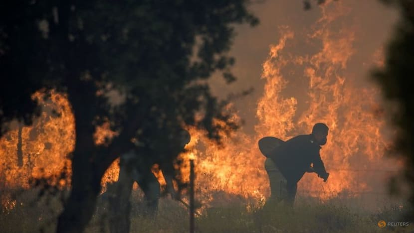 Spain evacuates nearly 1,000 people from path of wildfire