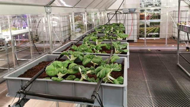 职总恒习首个农业科技培训空间 明年前录取180学员