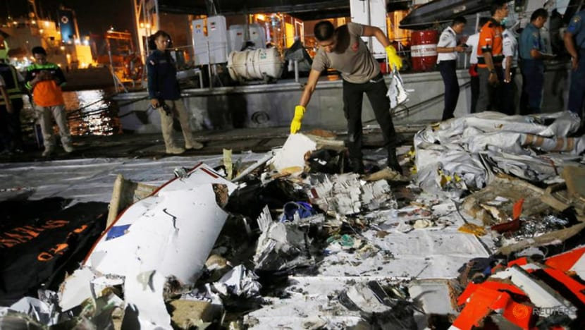 Indonesian aircraft was new, fell out of a clear sky minutes after take-off