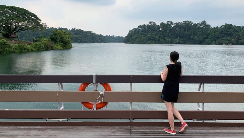 Commentary: Beyond scarcity and security, does Singapore need a new water narrative?