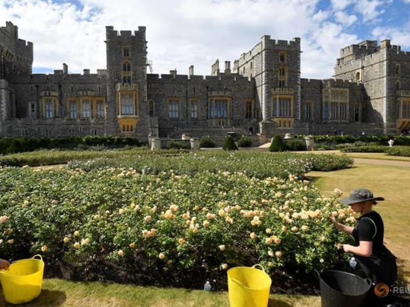 Windsor Castle opens terrace garden to public for first time in 40 years