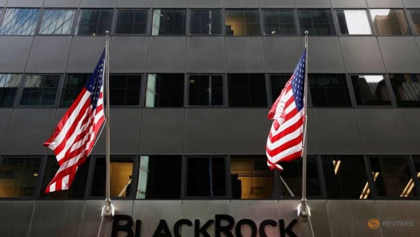 Top investor BlackRock to expand climate talks with companies in 2021