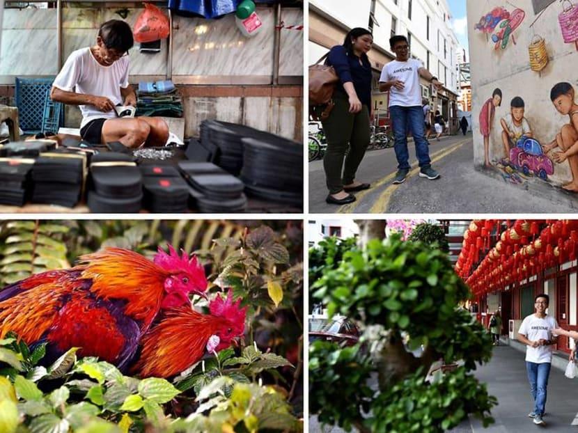 Up Your Alley: Hidden gems around Singapore's Chinatown