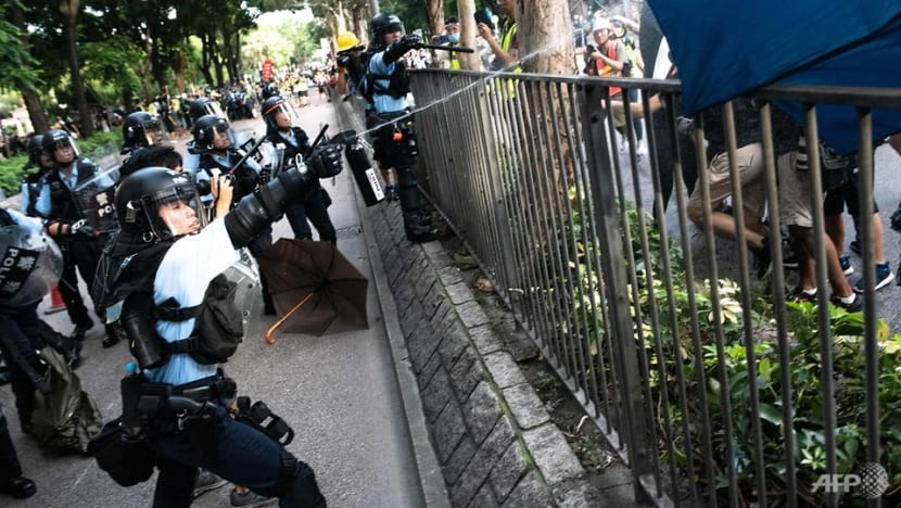 Clashes between Hong Kong police and protestors as thousands march against Chinese traders in border town
