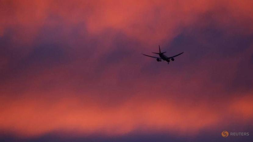 Global airline emissions plan falls short of EU goals, Brussels advised