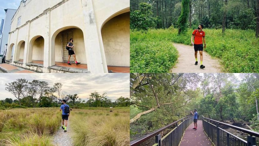 Discovering Singapore on foot: Highlights of a 5-day walk around the island