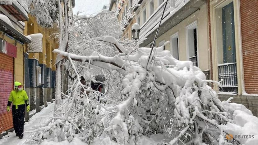 Spain to send out COVID-19 vaccine, food convoys after snowstorm paralyses roads