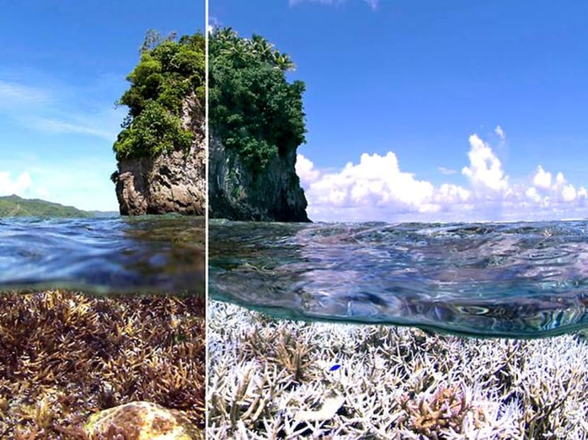 Impact of climate change shown through #10YearChallenge photos