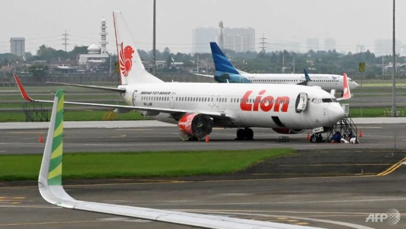 IN FOCUS: Indonesia's journey to improved aviation safety standards