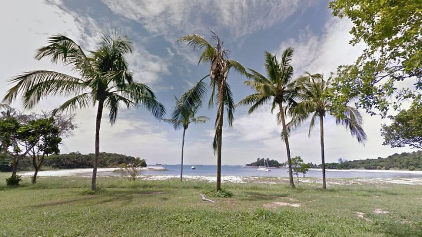 12 people to be charged for breaching COVID-19 safe distancing measures at Lazarus Island