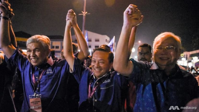 Barisan Nasional's Wee Jeck Seng clinches landslide victory in Tanjung Piai by-election