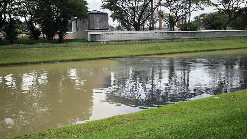 PUB, NEA investigating black discharge in Potong Pasir canal