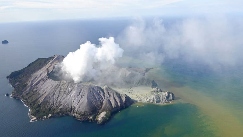 Commentary: Why were tourists allowed to visit New Zealand's White Island volcano?