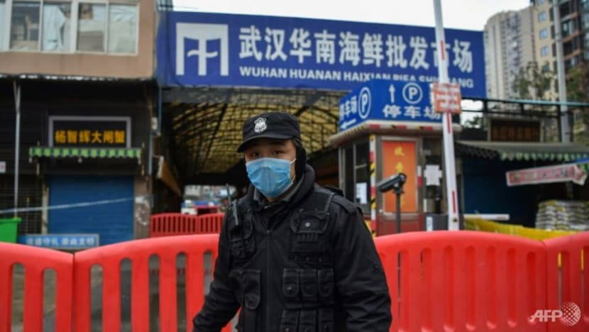 WHO probe into Wuhan COVID-19 outbreak 'not about finding a guilty country'
