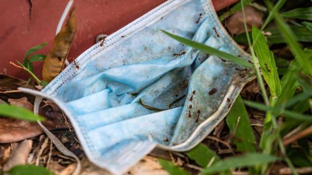晨光|着眼天下:马国塑料垃圾问题加剧 热血青年推出环保方案