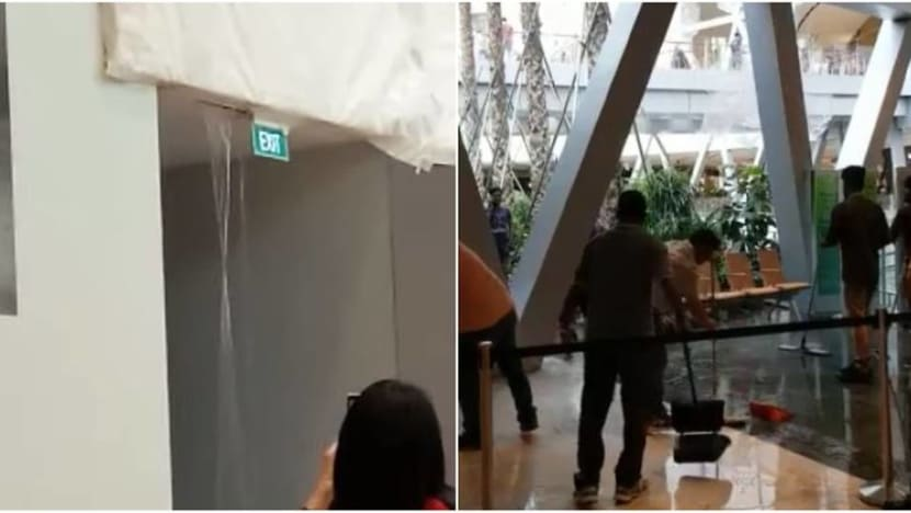 Water leak at Changi Airport's Jewel due to 'sprinkler issue'