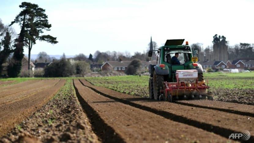 EU tries again to strike deal on greener farming subsidies