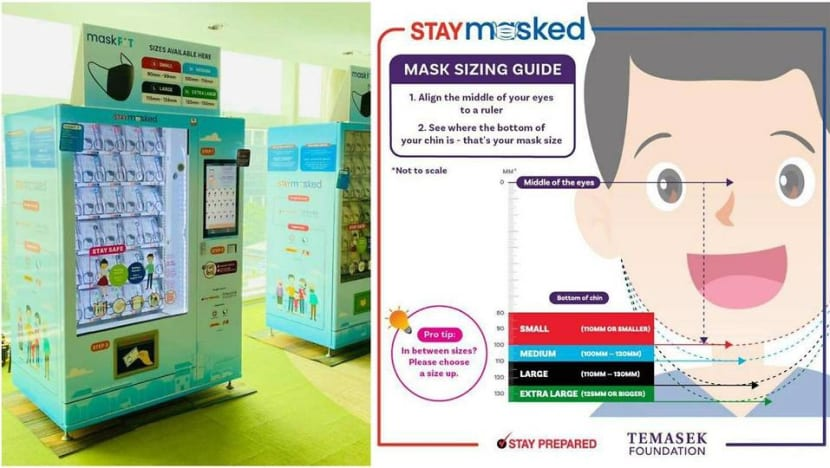 COVID-19: Every Singapore resident to get free pair of reusable masks from Nov 30