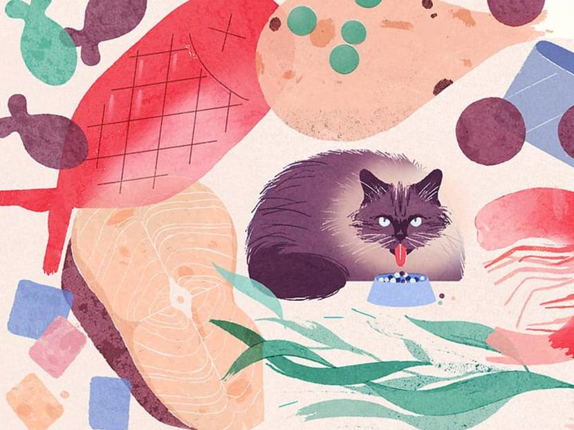 Yes, your pets are probably too fat – and that might take two years off their lives