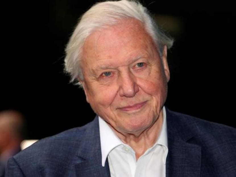 David Attenborough leads call for world to invest US$500 billion a year to protect nature