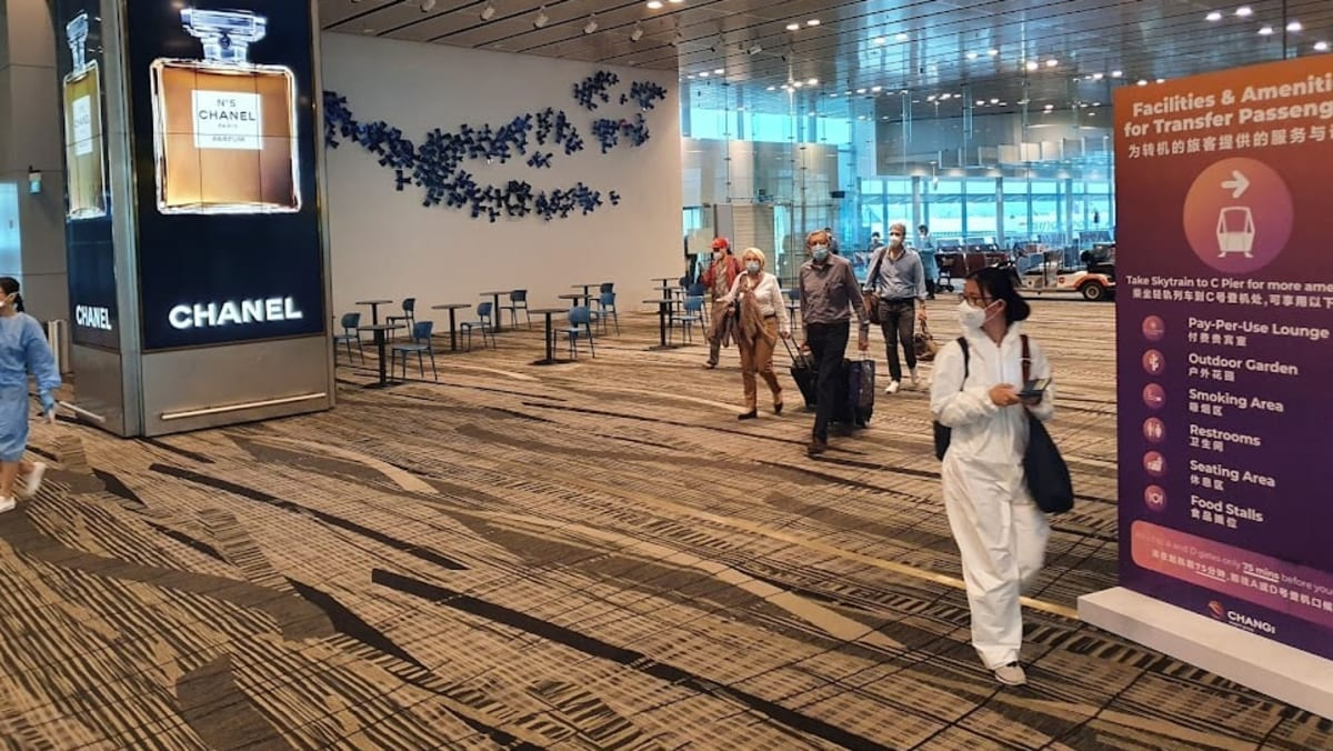 'Smooth and hassle-free' process for first passengers on the infused travel lane from Germany to Singapore