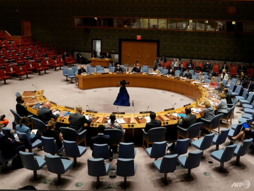 UN Council adopts Afghanistan resolution, but no 'safe zone'