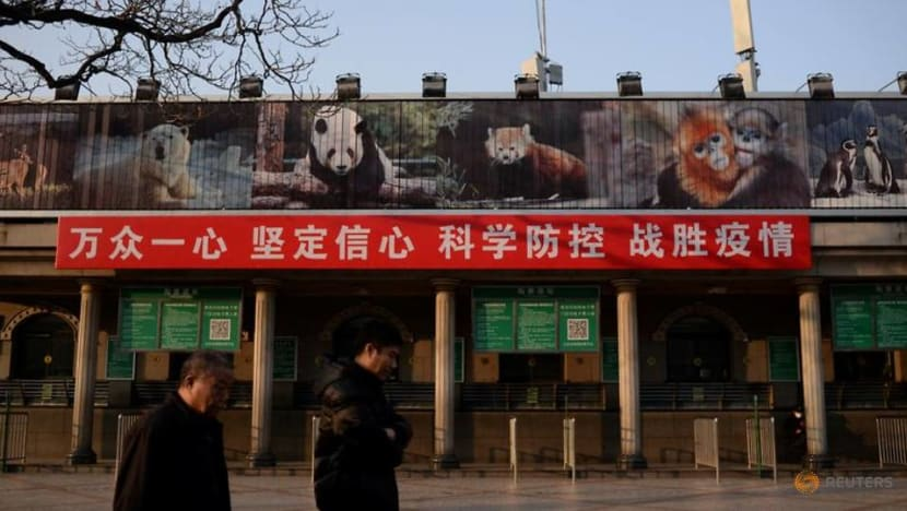 As WHO highlights COVID-19 animal origins, China wildlife crackdown needs more teeth: Experts