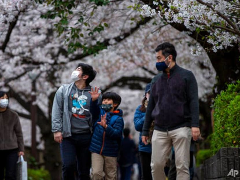 Japan's famous cherry blossoms bloom early as climate warms