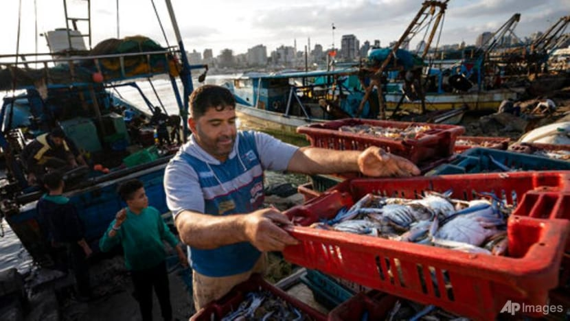 Gaza fishermen take to water again after ceasefire