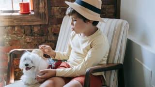 孩子吵着要小狗 养宠物的3大好处