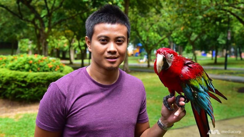 Flying high: The art of training birds to roam free takes off