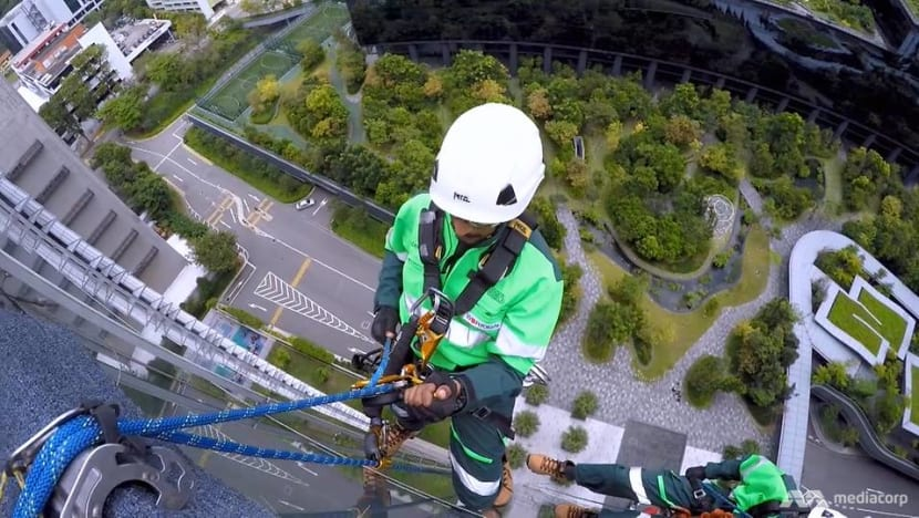 To do their job, they dangle from high-rise buildings by just a rope